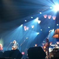 Wilco, un chute contra el dolor