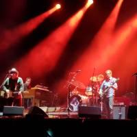 Wilco: quedarse en el sitio